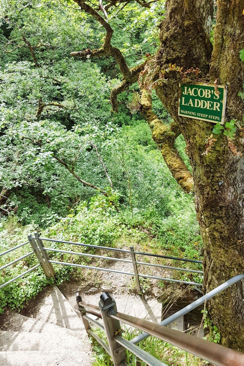 Jacab ladder.jpg