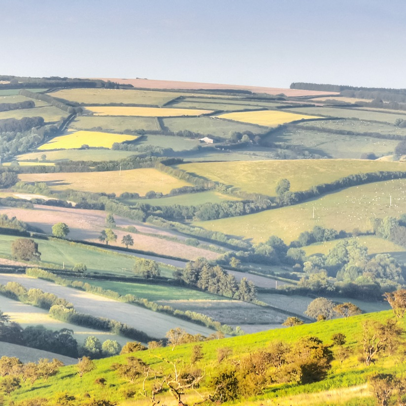 Patchwork fields of Somerset