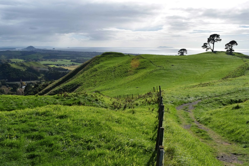 Papamoa Hill Walk