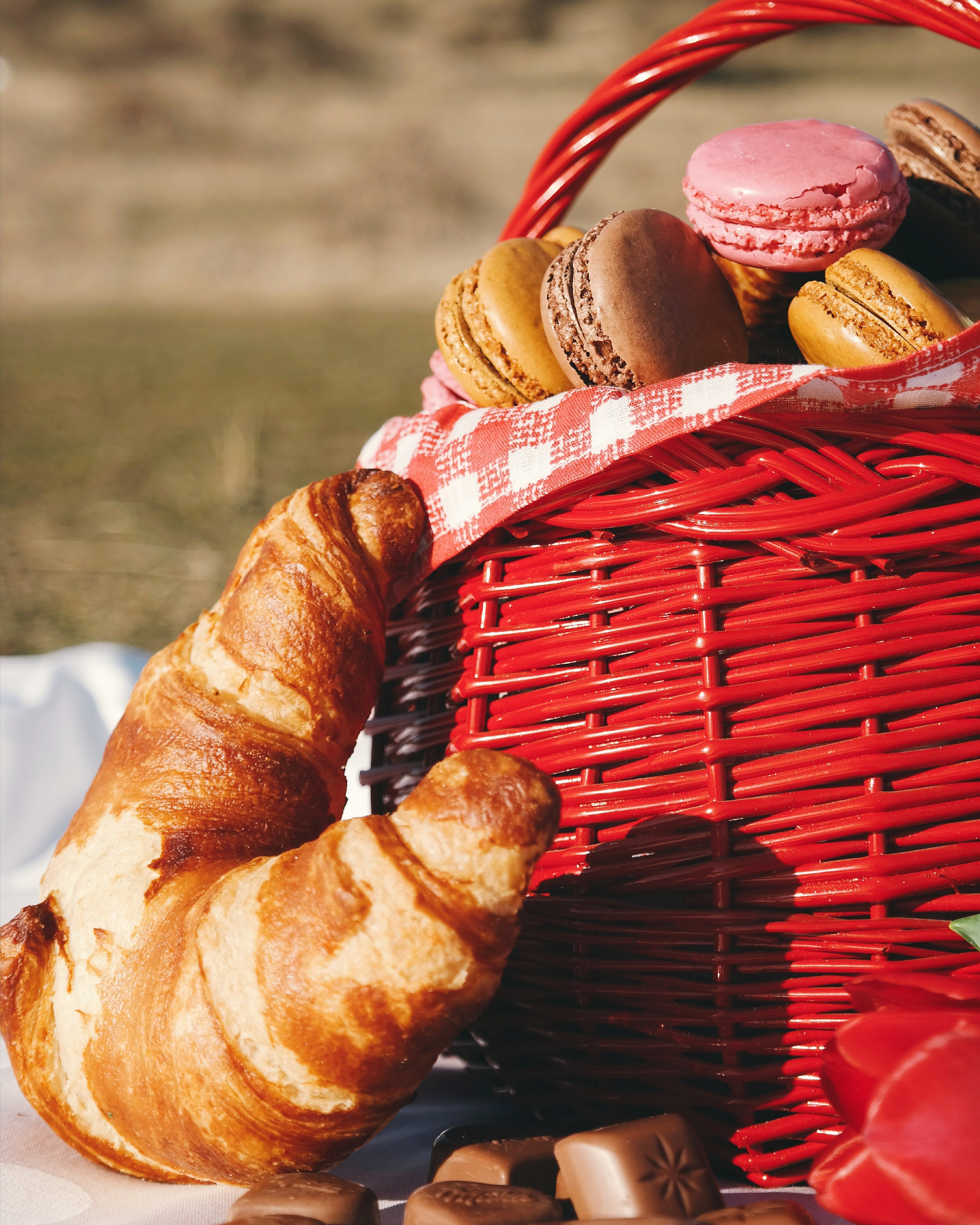 French inspired picnic.jpg