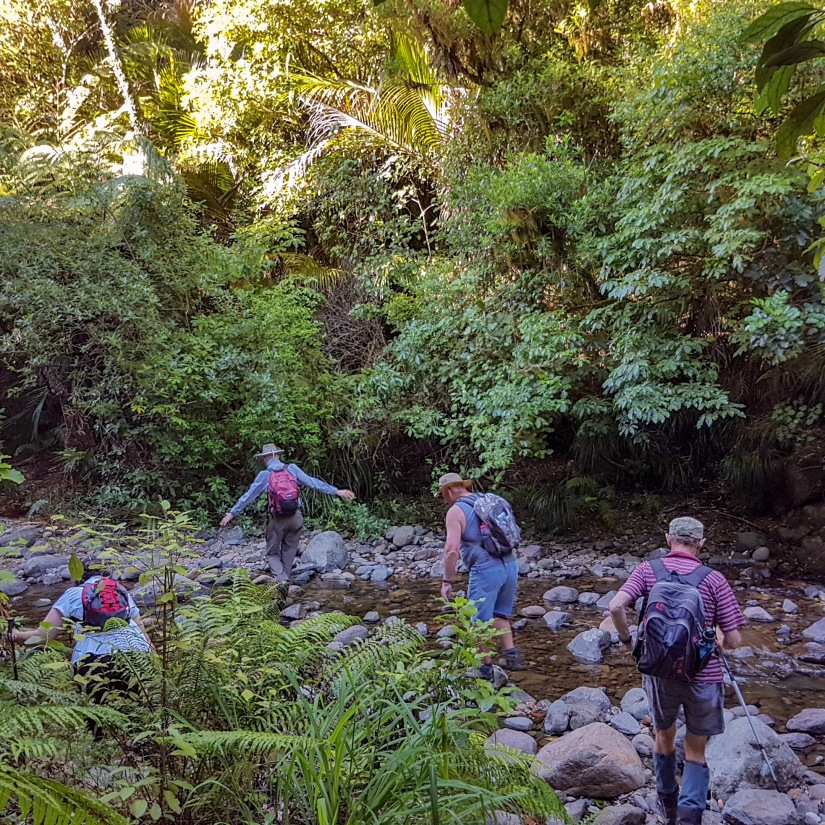 First stream crossing