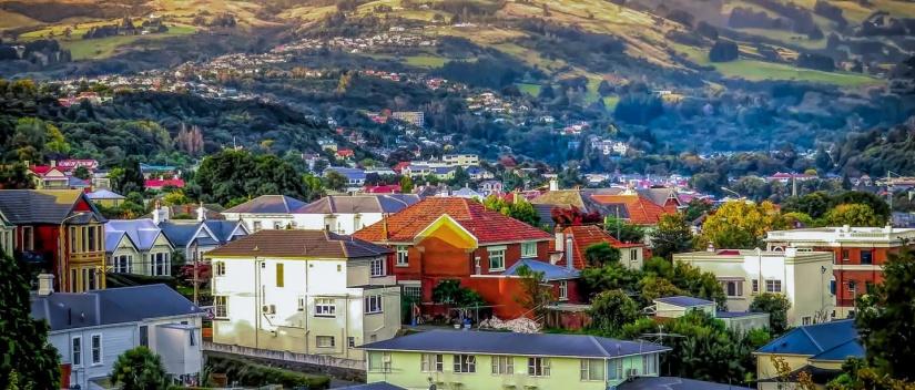 Dunedin landscape1