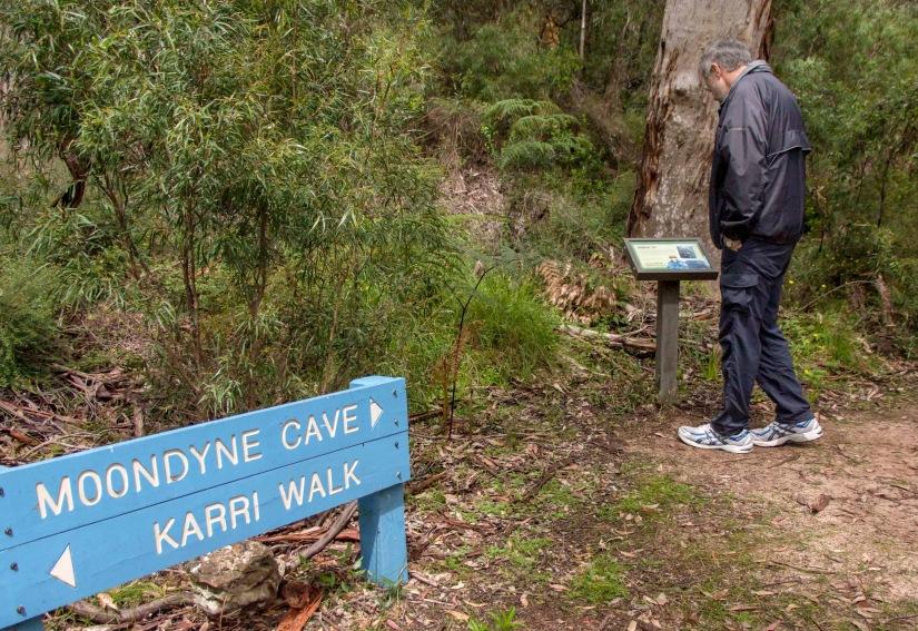 Karri Walk - Les