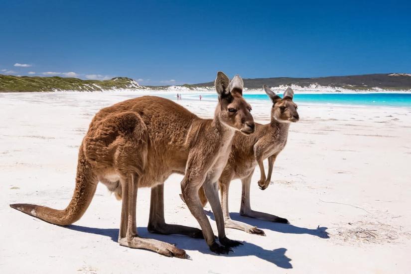 Lucky Beach, Western Australia