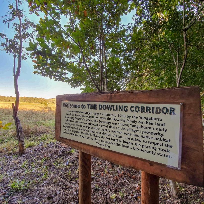 Dowling Corridor.jpg
