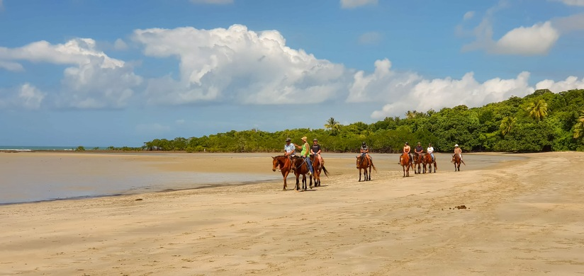 Horse trekkers2