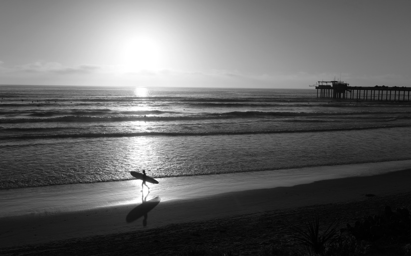 Surfer walking along beach.jpg